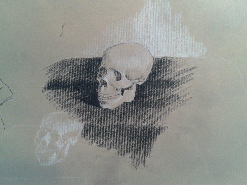 cours de dessin débutant