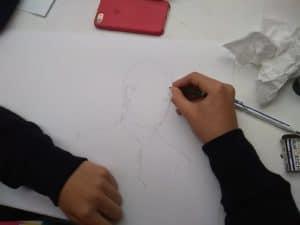 stage de dessin d'observation