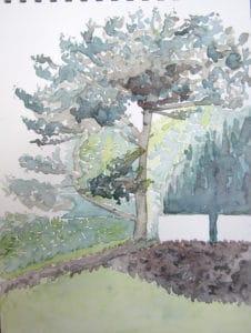 stage-aquarelle-Paris-arbre-carnet de voyage